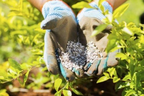 Нужно ли перепахивать осенью огород. Что вносить под осеннюю перекопку