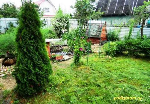 Работы в сентябре на приусадебном участке. Какие работы нужно проводить в саду в сентябре